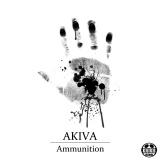 Ammunition_web